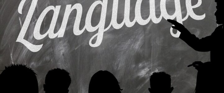 how to successfully learn a language